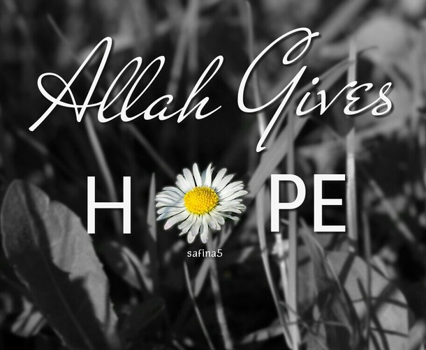 islamic quote, allah, hope, flower, muslimah, life, quotes, quote, الله, text, islam, safina5