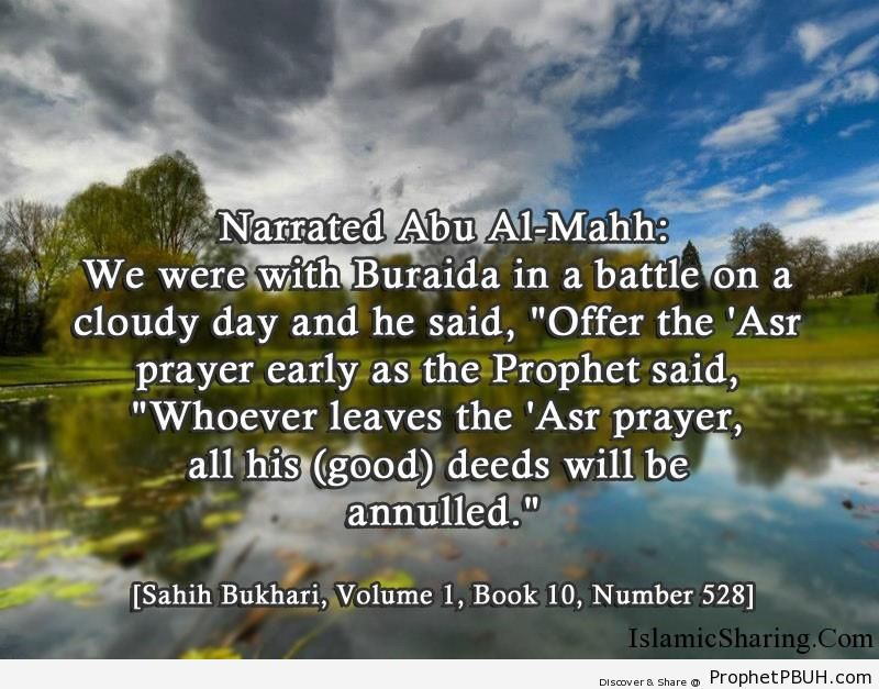 sahih bukhari volume 1 book 10 number 528