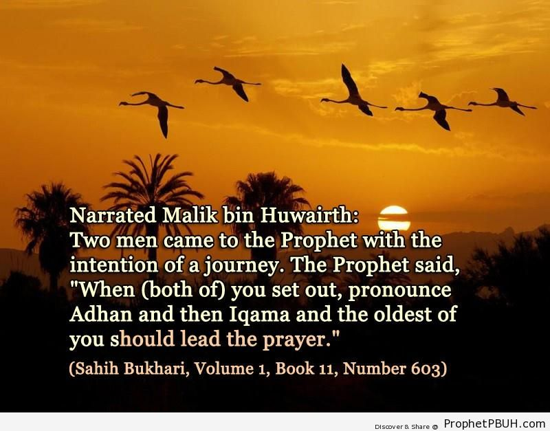 sahih bukhari volume 1 book 11 number 603