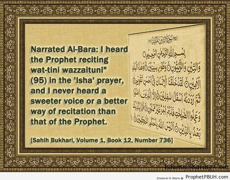 sahih bukhari volume 1 book 12 number 736