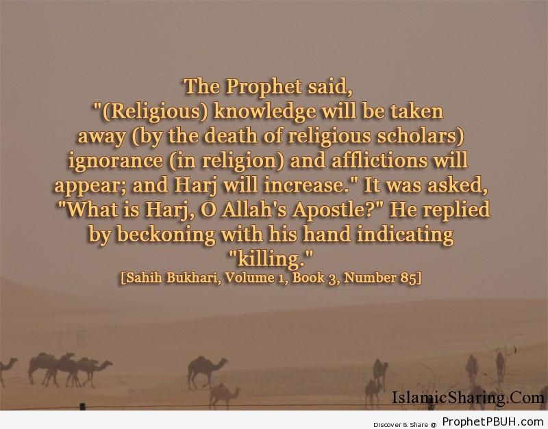 sahih bukhari volume 1 book 3 number 85