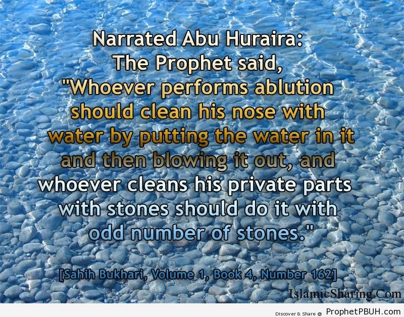 sahih bukhari volume 1 book 4 number 162