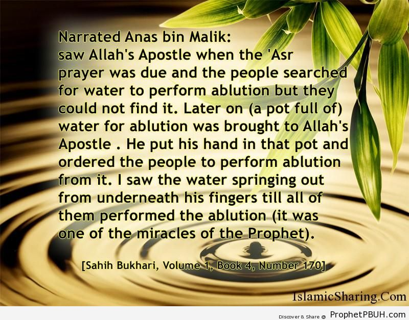 sahih bukhari volume 1 book 4 number 170