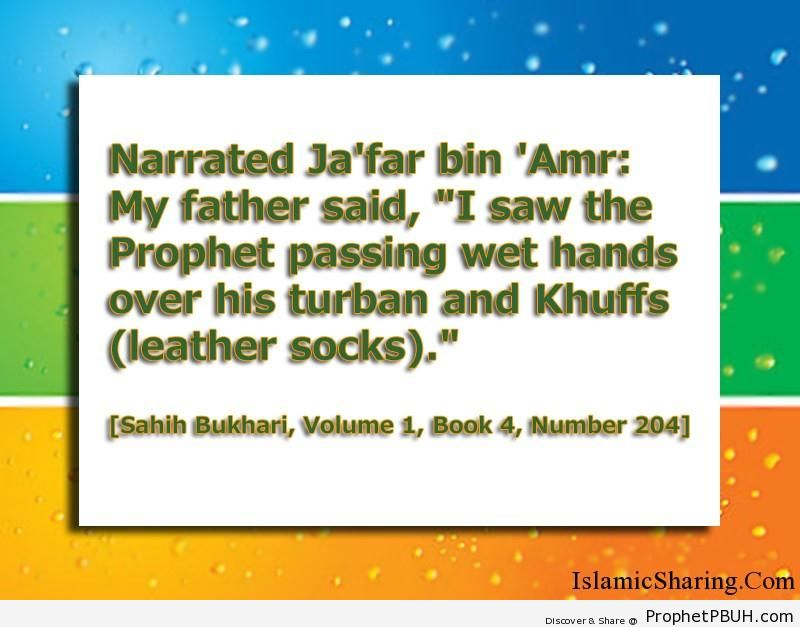 sahih bukhari volume 1 book 4 number 204