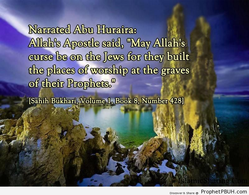 sahih bukhari volume 1 book 8 number 428