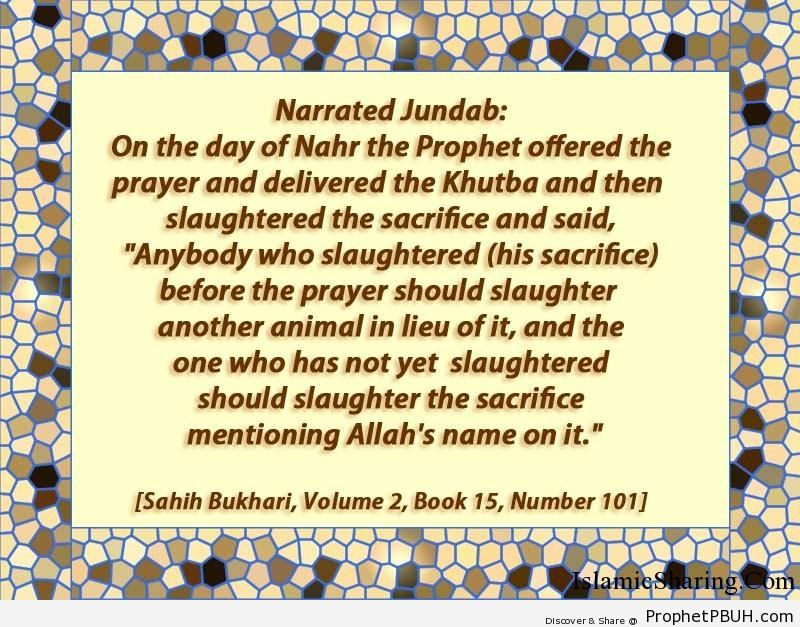 sahih bukhari volume 2 book 15 number 101