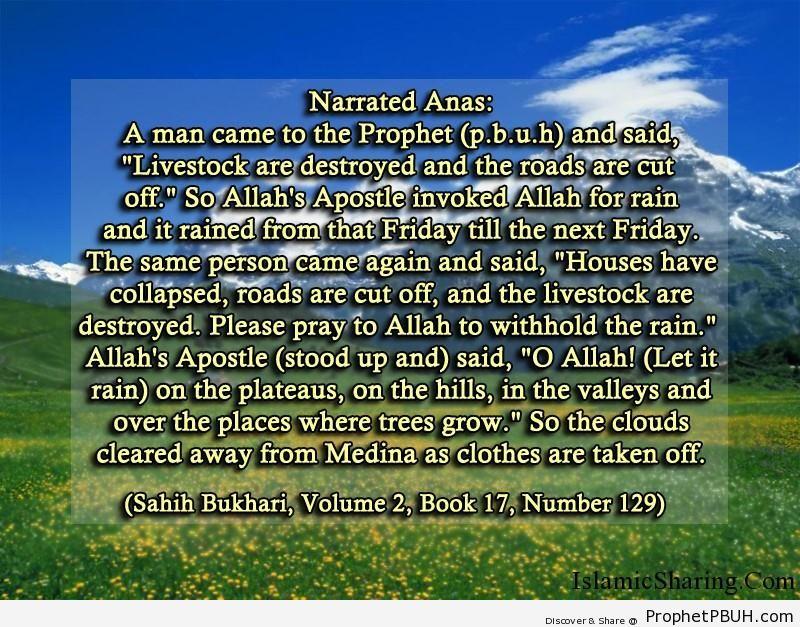 sahih bukhari volume 2 book 17 number 129