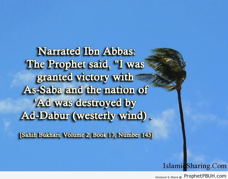 sahih bukhari volume 2 book 17 number 145