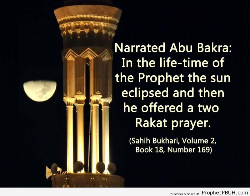 sahih bukhari volume 2 book 18 number 169