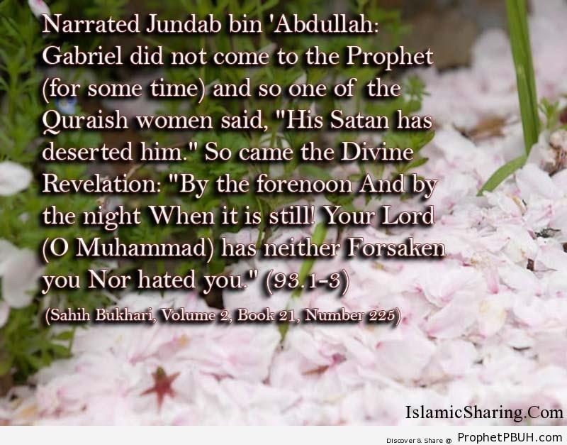 sahih bukhari volume 2 book 21 number 225