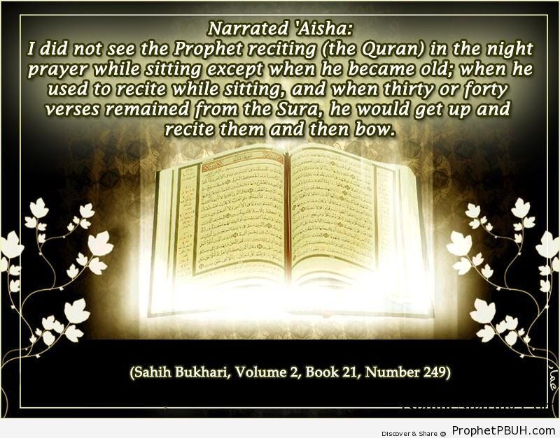sahih bukhari volume 2 book 21 number 249
