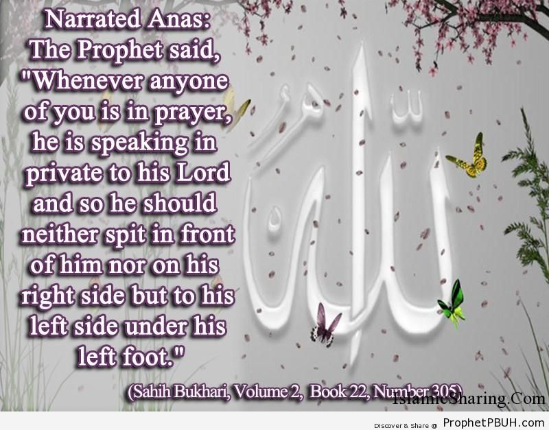 sahih bukhari volume 2 book 22 number 305