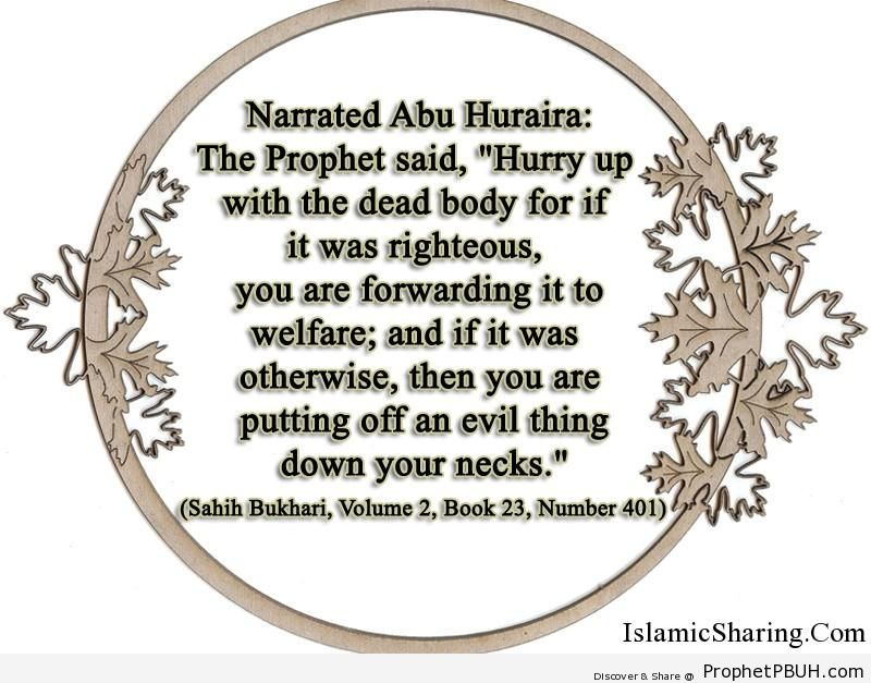 sahih bukhari volume 2 book 23 number 401