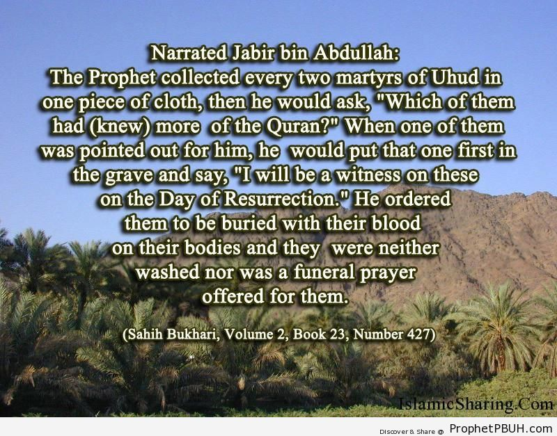 sahih bukhari volume 2 book 23 number 427