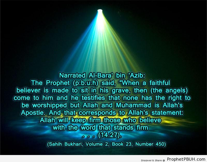sahih bukhari volume 2 book 23 number 450