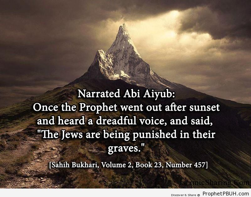 sahih bukhari volume 2 book 23 number 457