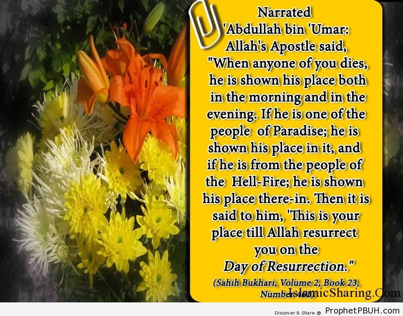 sahih bukhari volume 2 book 23 number 461