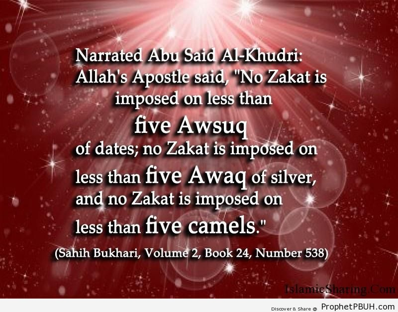 sahih bukhari volume 2 book 24 number 538