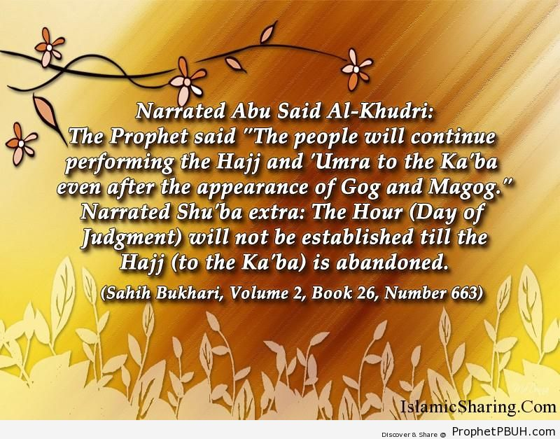sahih bukhari volume 2 book 26 number 663