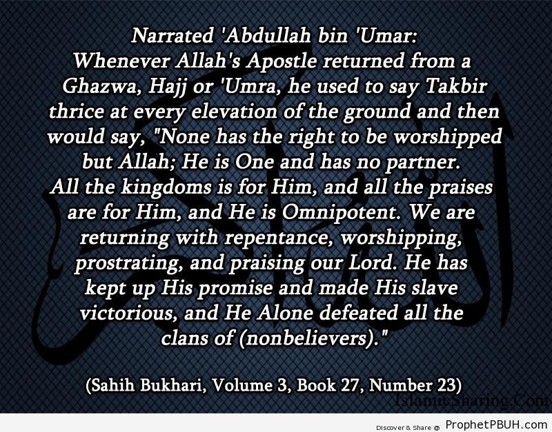 sahih bukhari volume 3 book 27 number 23