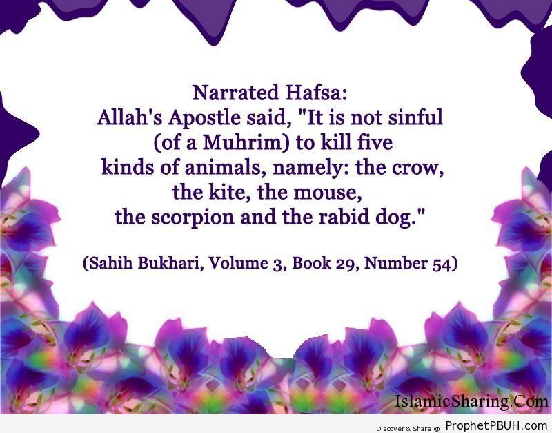 sahih bukhari volume 3 book 29 number 54