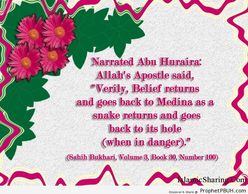 sahih bukhari volume 3 book 30 number 100