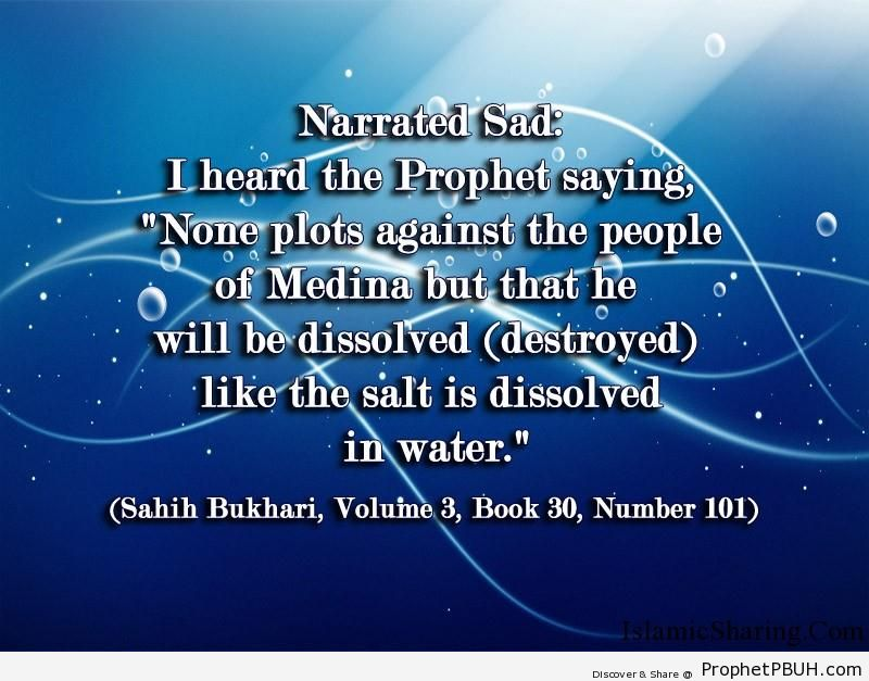 sahih bukhari volume 3 book 30 number 101