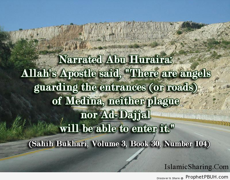 sahih bukhari volume 3 book 30 number 104