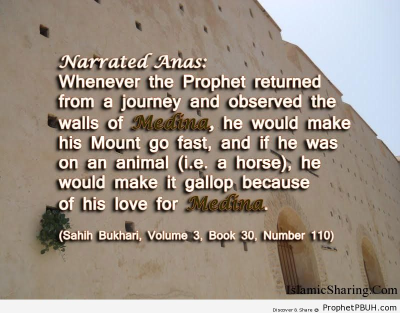 sahih bukhari volume 3 book 30 number 110