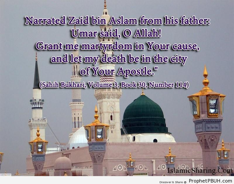 sahih bukhari volume 3 book 30 number 114