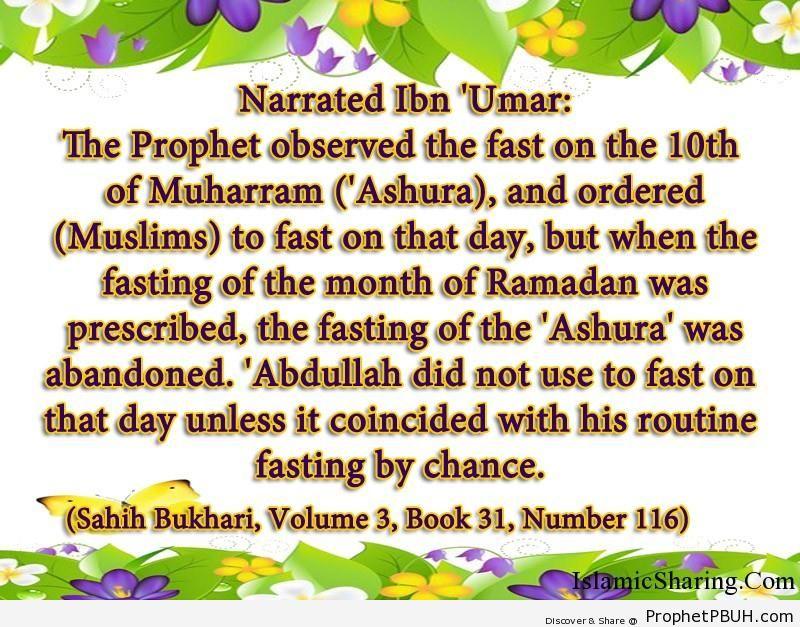 sahih bukhari volume 3 book 31 number 116
