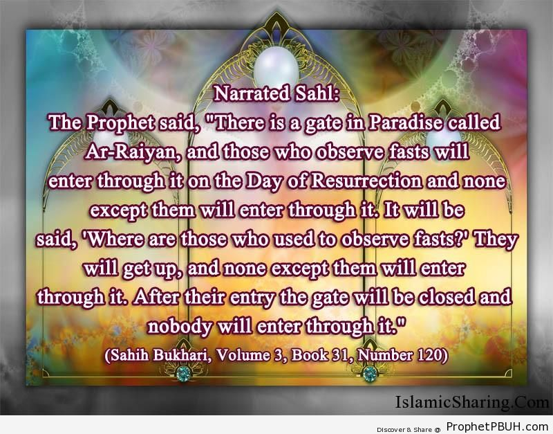 sahih bukhari volume 3 book 31 number 120