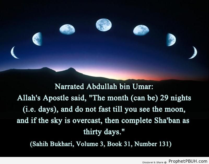 sahih bukhari volume 3 book 31 number 131