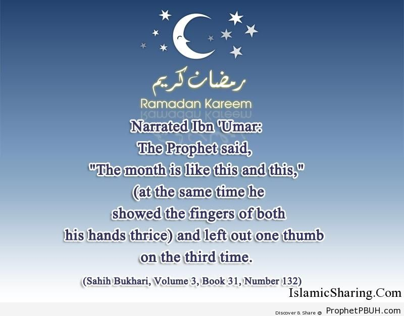 sahih bukhari volume 3 book 31 number 132