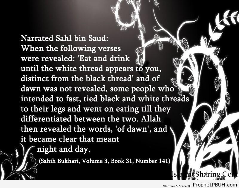 sahih bukhari volume 3 book 31 number 141