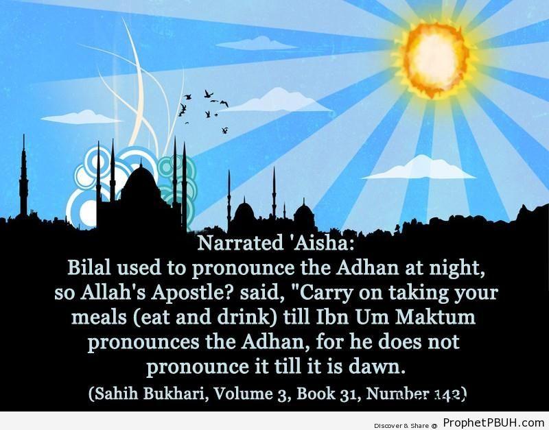 sahih bukhari volume 3 book 31 number 142