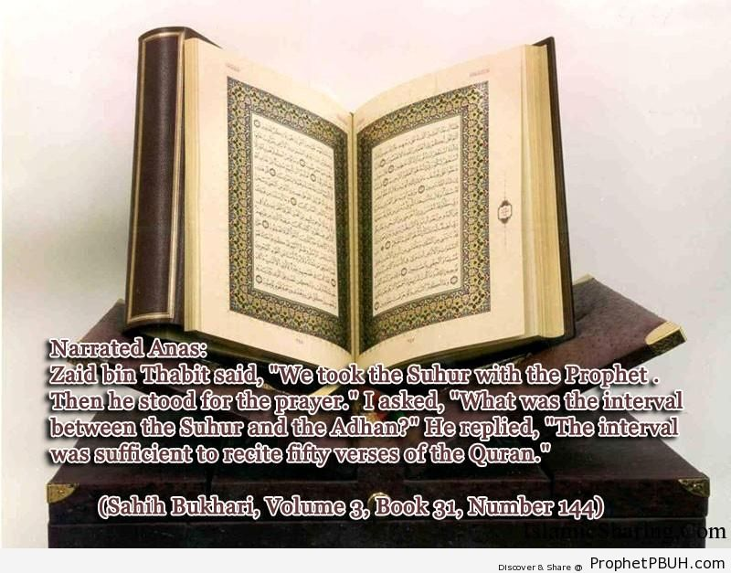 sahih bukhari volume 3 book 31 number 144