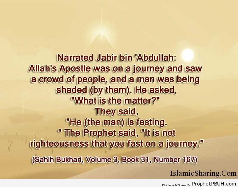 sahih bukhari volume 3 book 31 number 167