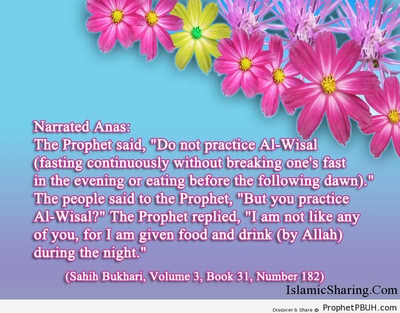 sahih bukhari volume 3 book 31 number 182