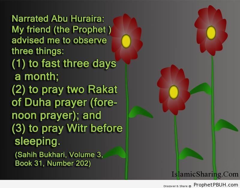 sahih bukhari volume 3 book 31 number 202