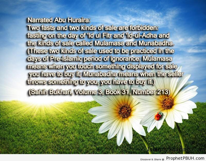 sahih bukhari volume 3 book 31 number 213