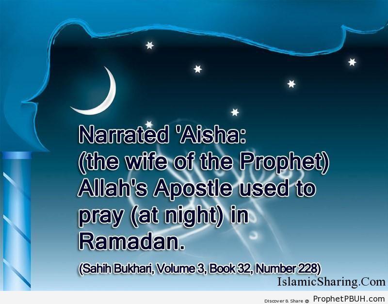 sahih bukhari volume 3 book 32 number 228