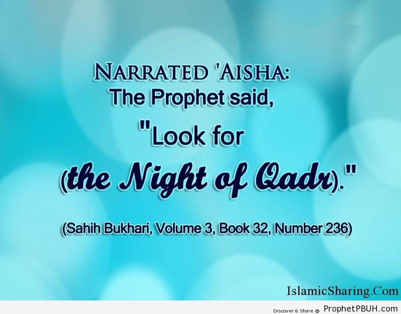 sahih bukhari volume 3 book 32 number 236