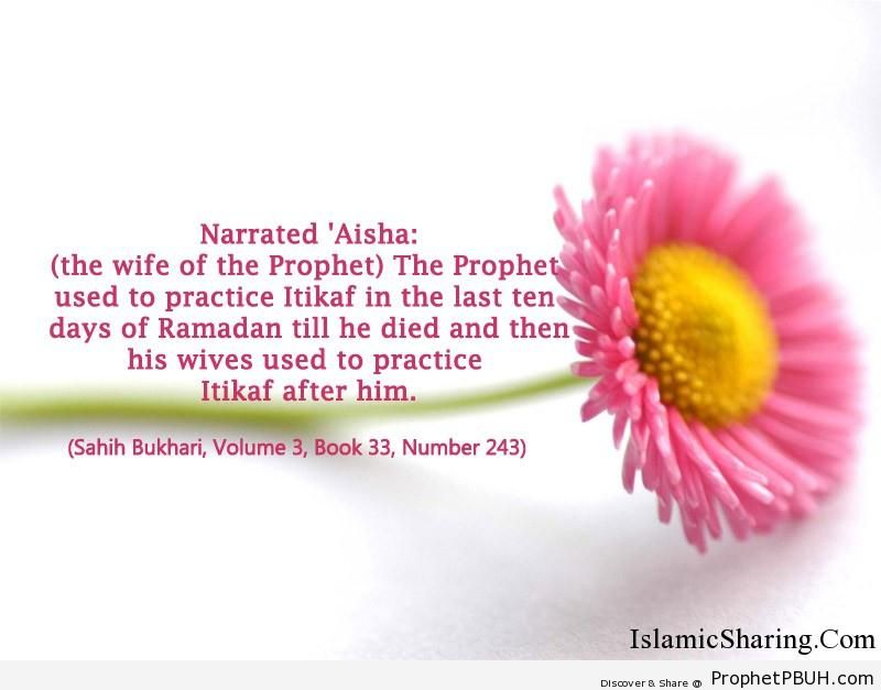 sahih bukhari volume 3 book 33 number 243