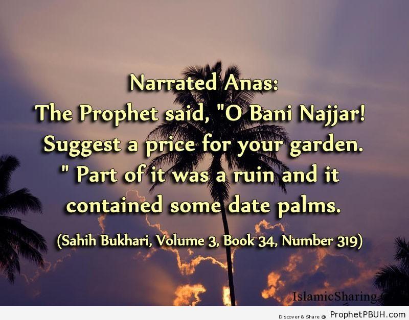 sahih bukhari volume 3 book 34 number 319