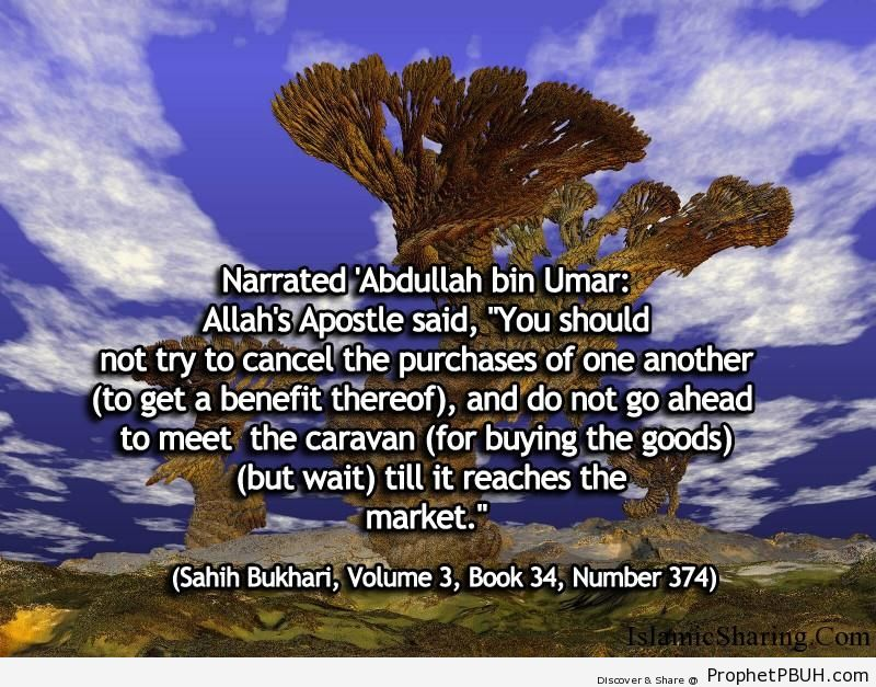 sahih bukhari volume 3 book 34 number 374
