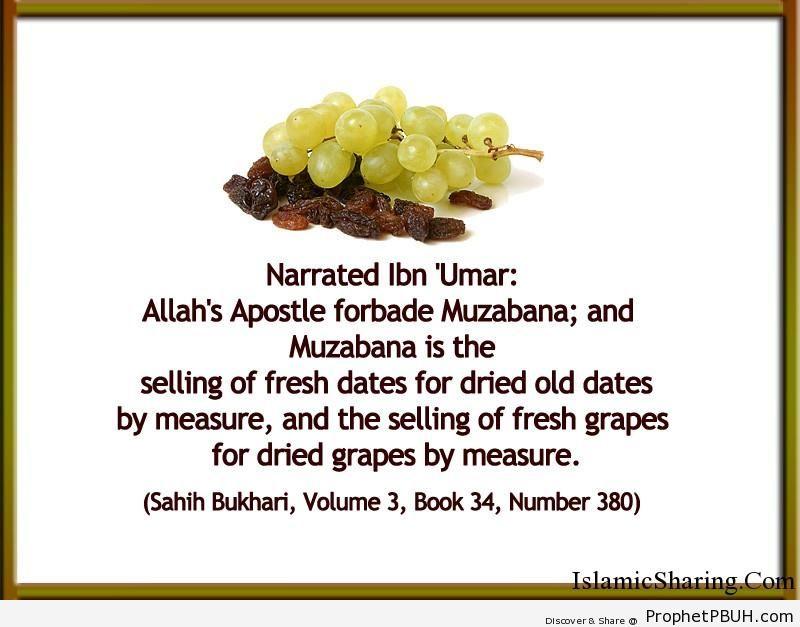 sahih bukhari volume 3 book 34 number 380