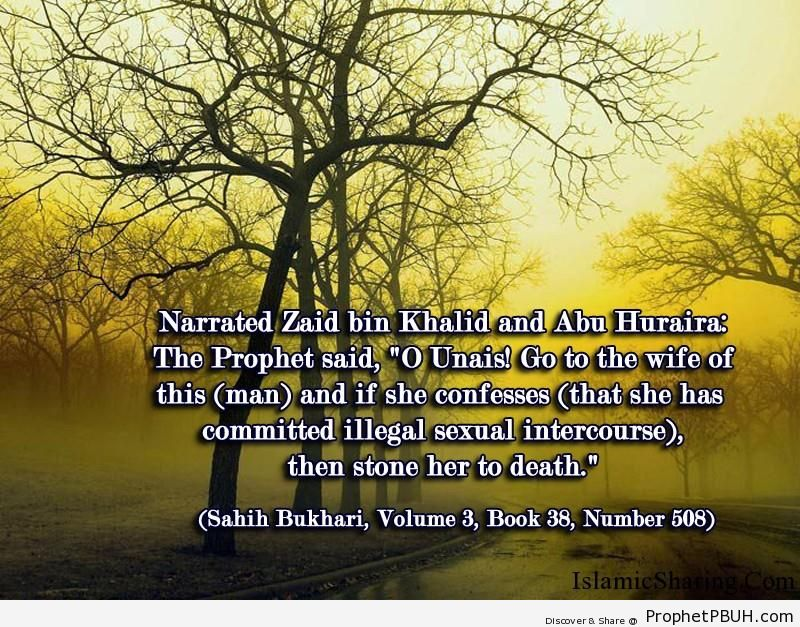 sahih bukhari volume 3 book 38 number 508