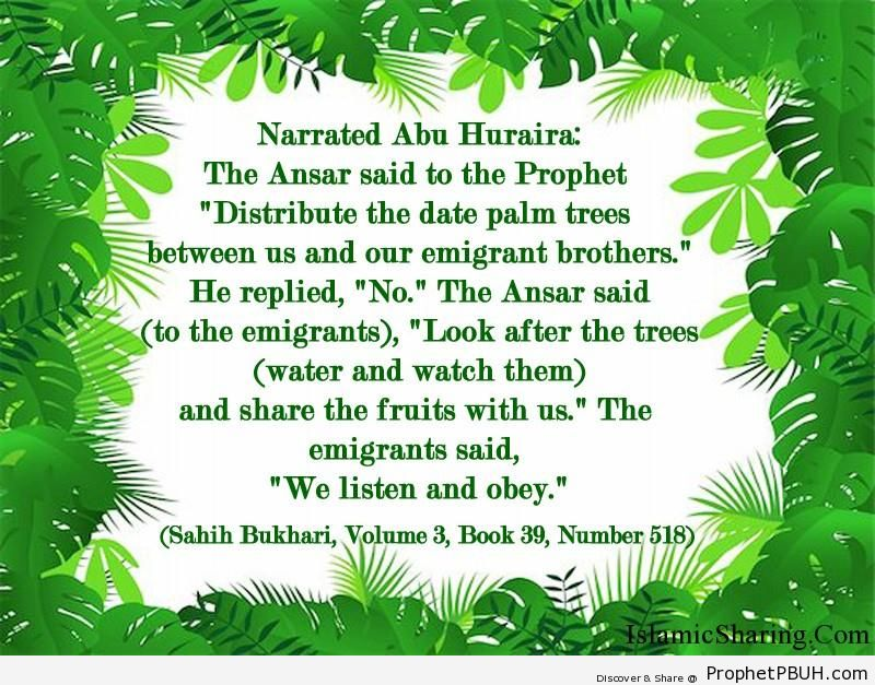 sahih bukhari volume 3 book 39 number 518