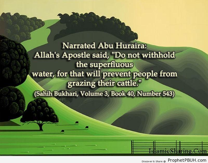 sahih bukhari volume 3 book 40 number 543